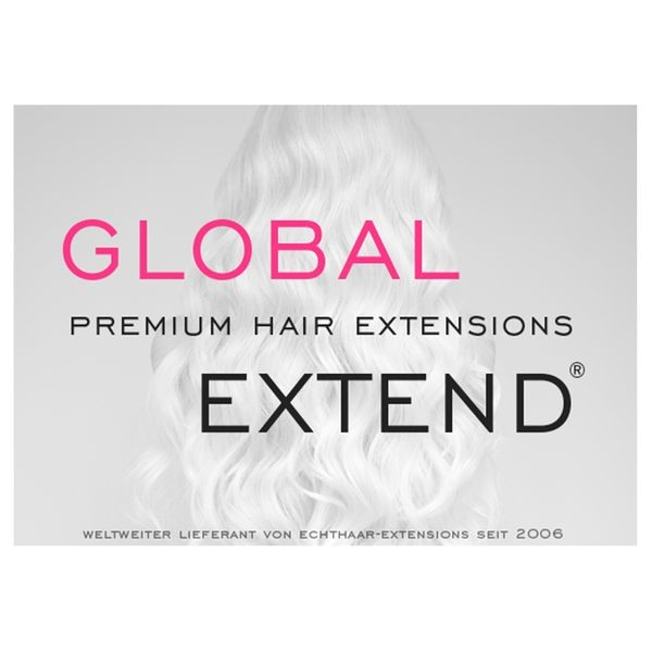 Global Extend Poster A2